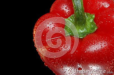 Red bell pepper closeup