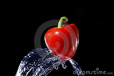 Red bell pepper gets hit by a water stream