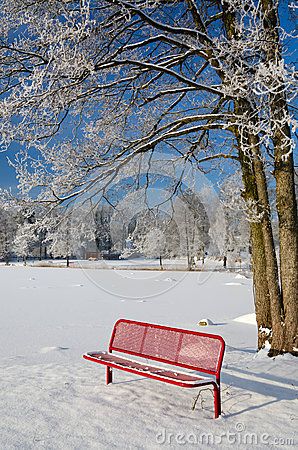 Red bench in winter scenery