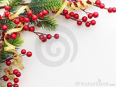 Red Berries and Pine Frame