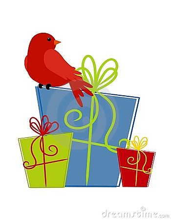 Red Bird Sitting on Gifts