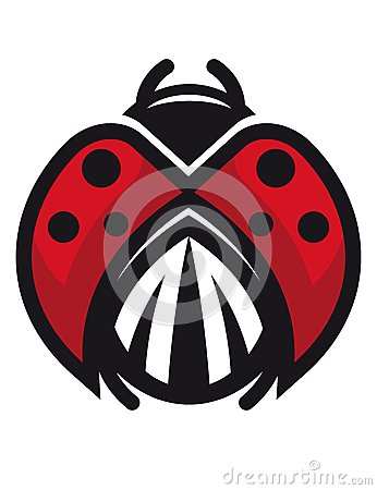 Red and black ladybug or ladybird