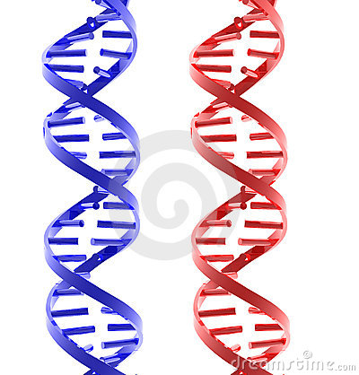 Red and blue glossy isolated DNA structures