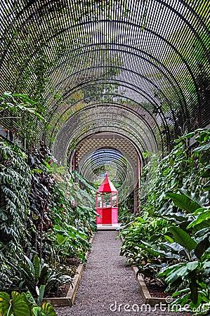 Red booth in botanical garden in puerto de la cruz stock photo image 62746733 - Botanical garden puerto de la cruz ...