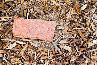 Red Brick in Mulch