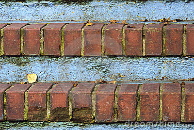 Red Brick Steps with Leaves