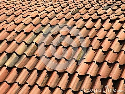 Red bricks roof