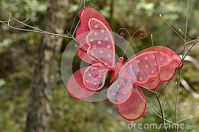 A red butterfly