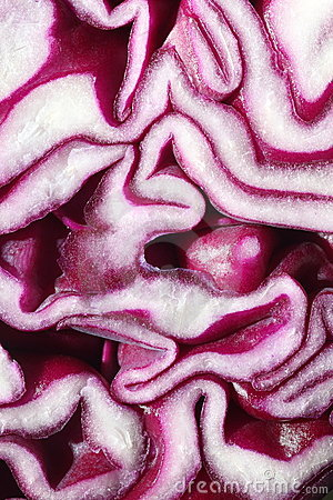 Red cabbage closeup