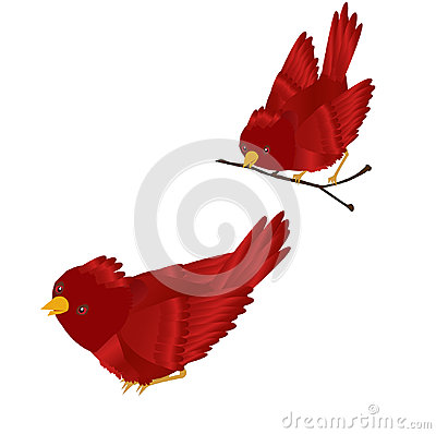 Red Cardinal Clipart