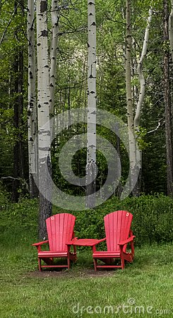Free Red Chairs And Birch Trees Royalty Free Stock Images - 104707869