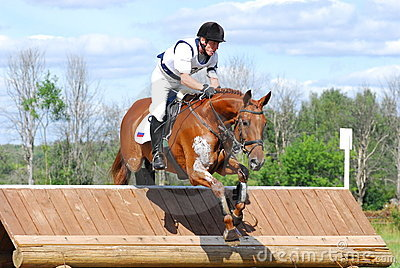 Chestnut Horse Jumping | www.pixshark.com - Images ... - photo#35