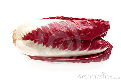 Red Chicory Isolated