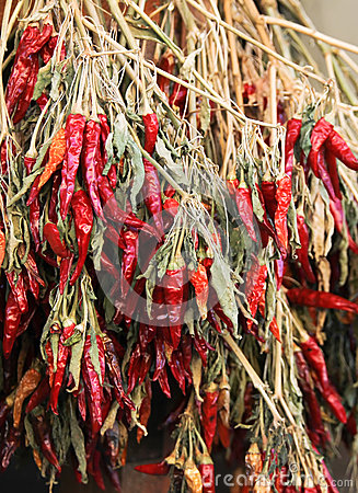 Free Red Chili Pepper Stock Photos - 40363663
