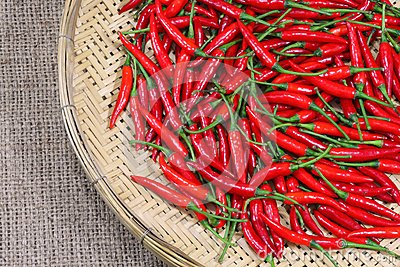 Red chili peppers on bamboo weave