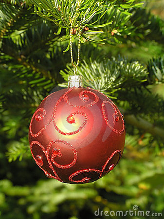 Red Christmas ball hanging on a Christmas tree