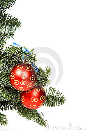 Red christmas ball in tree with room for text