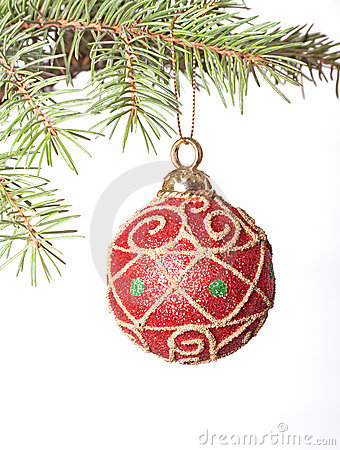 Red Christmas bauble on fir-tree brunch