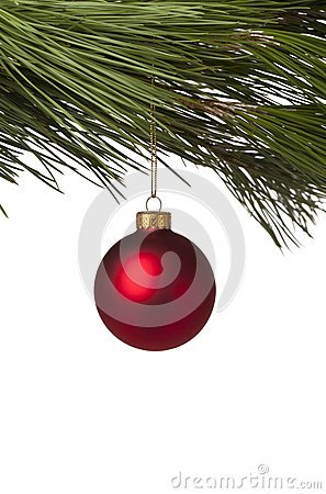 Red Christmas bauble hanging on tree