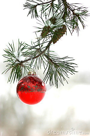 Free Red Christmas Decoration On Snow-covered Pine Tree Outdoors Stock Photos - 1860063