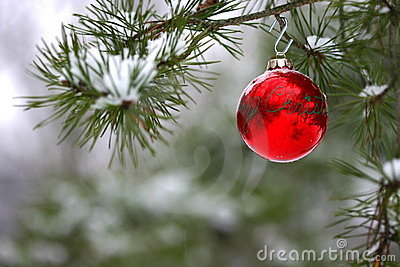 Red Christmas decoration on snow-covered pine tree outdoors