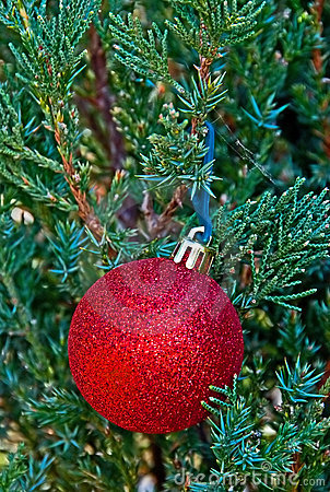 A red Christmas decoration on tree