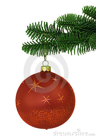 Red Christmas Ornament On Noble Pine Tree Bough