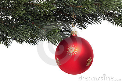 Red Christmas tree ball on fir branch