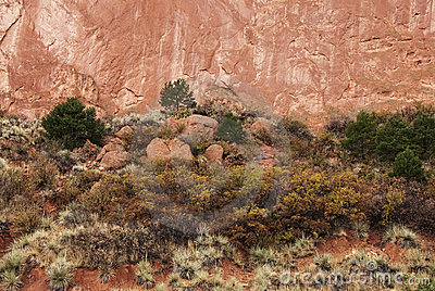 Red Cliffs and Soil