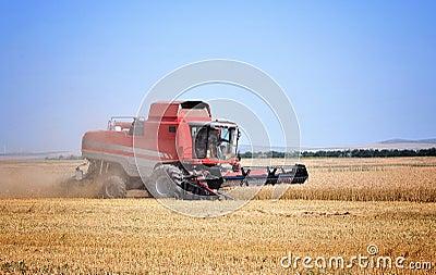 Red combine harvesting