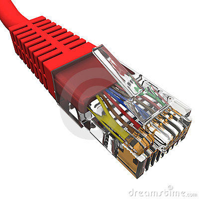 Red cord with connector rj45 on a white background