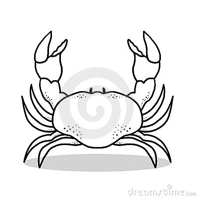Crab outline illustration
