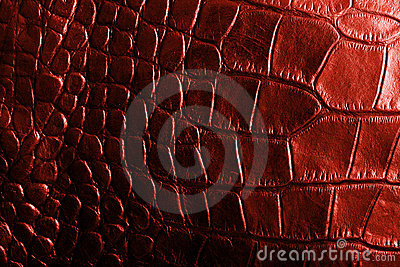 Red crocodile textured leather