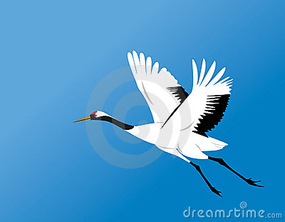 Red-crowned crane fly vector