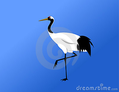 Red-crowned crane standing vector