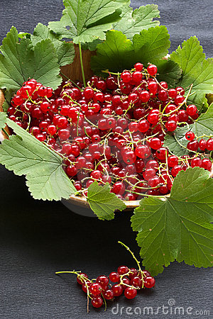 Red currant on the table