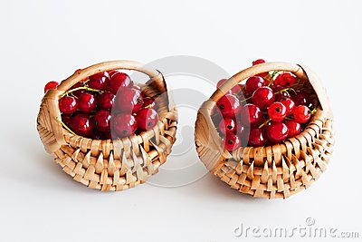 Red currants in basket