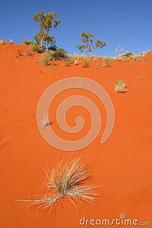 Red desert sand dune Australia