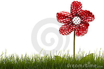Red drapery flower with grass