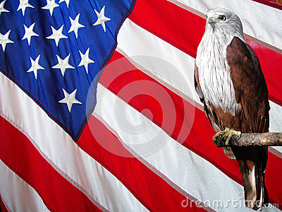 RED Eagle Set Against American Flag.