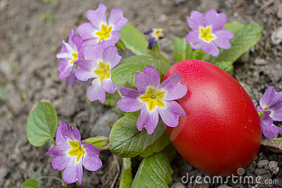 Red egg and flowers