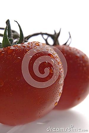 Red fresh tomatos