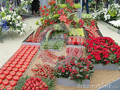Red Fruit and Vegetable Display