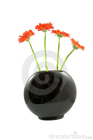 Free Red Gerber Flowers In Balck Vase Stock Images - 11286404