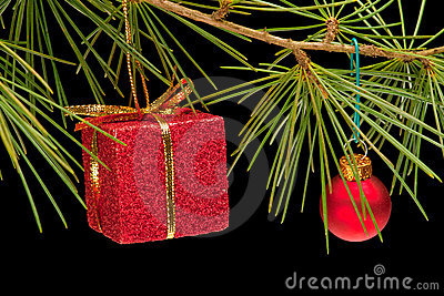Red gift box and bauble on pine branch