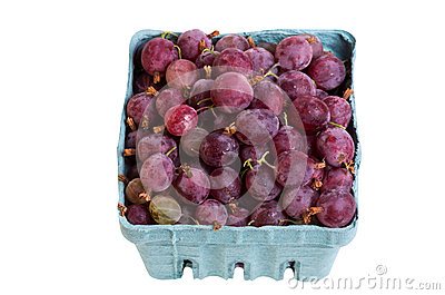 Red gooseberries isolated on white