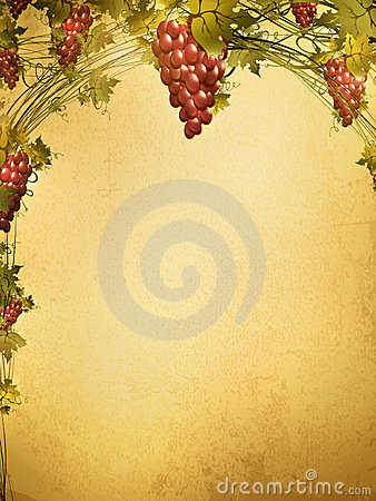 Red grape at grunge background