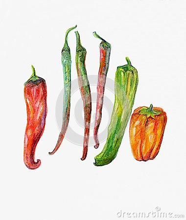 Red, Green and Orange Peppers and Chillies.