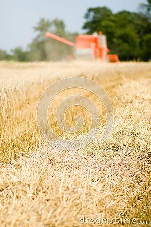 Red harvesting machine