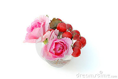Red haw berries and two pink roses